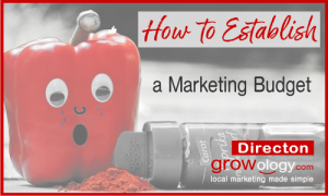 How to Establish a Marketing Budget